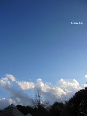 choco 2011.11.20-4.jpg