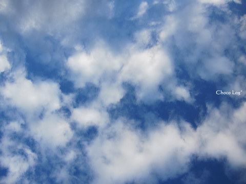 choco 2011.9.23-1.jpg