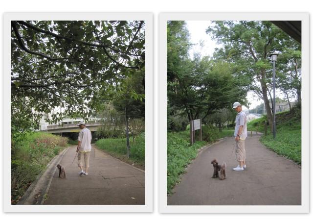 choco 2011.9.28-1.jpg