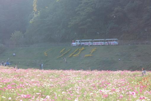 choco 2012.10.21-26.jpg