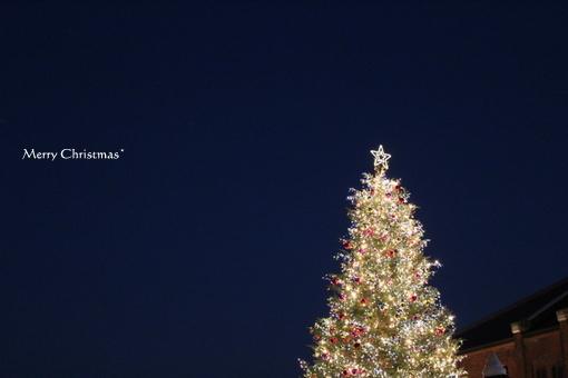 choco 2012.12.25-1.jpg