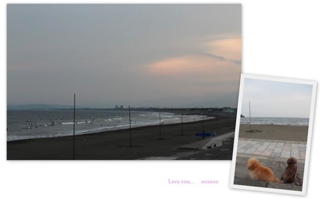 choco 2012.5.26-6.jpg