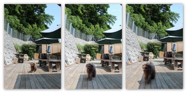 choco 2012.5.28-3.jpg