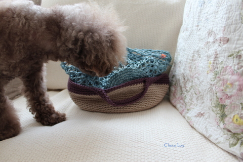 choco 2012.6.29-5.jpg