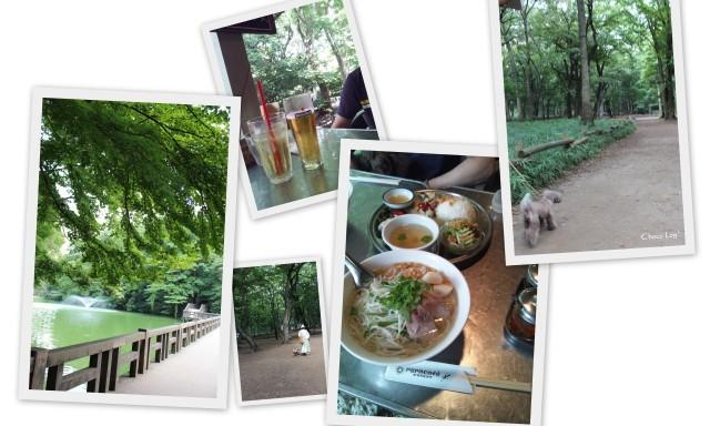 choco 2012.8.17-5.jpg