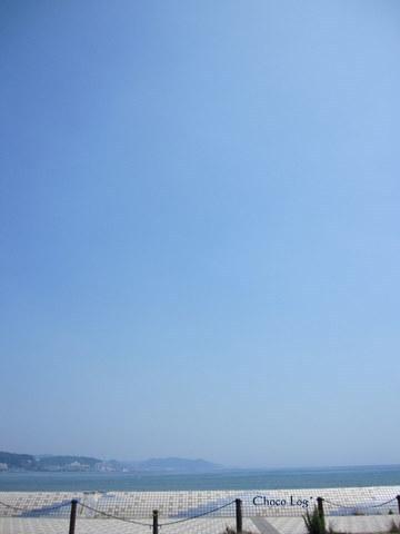 choco 2011.6.29-3.jpg