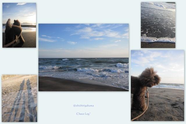 choco 2011.9.9-4.jpg